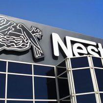 День карьеры Nestle. Особенности работы в области маркетинга и продаж